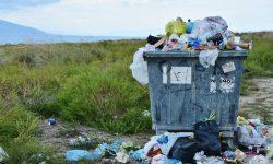 Descarte irregular de lixo na Av. Papagaios
