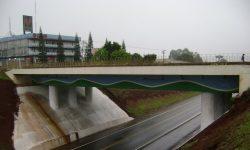 Viaduto Carelli recebe reclamações de moradores da região sul de Cascavel