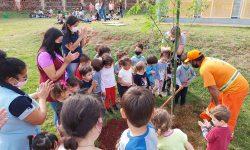 Crianças do Cmei Sueli Cozer participam do plantio de árvores